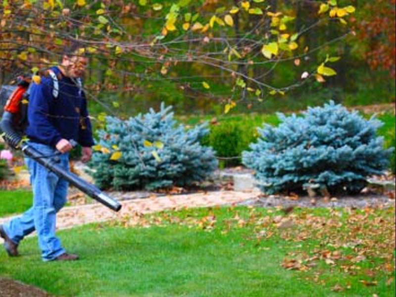Fall & Spring Cleanup - Fall & Spring Cleanup Archives - Monaco Landscaping LLC